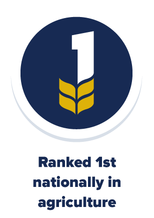 UC Davis is ranked 1st nationally in Agriculture