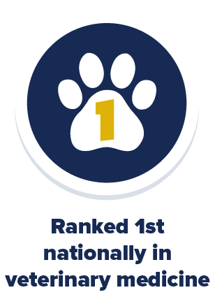 UC Davis is ranked 1st nationally for Veterinary Medicine