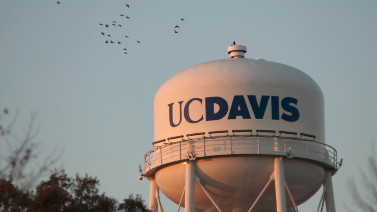 Image of UC Davis Water Tower at Sunset with birds flying on the left side