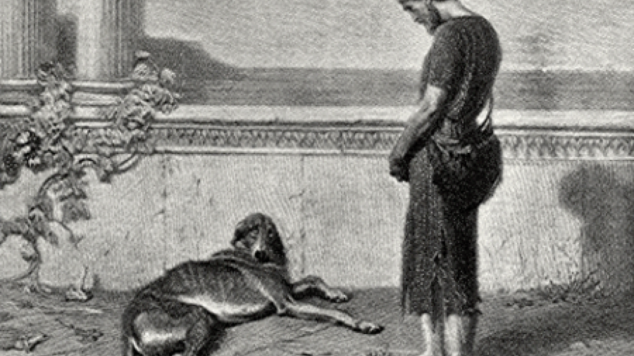 illustration of Odysseus returning to his dog Argos